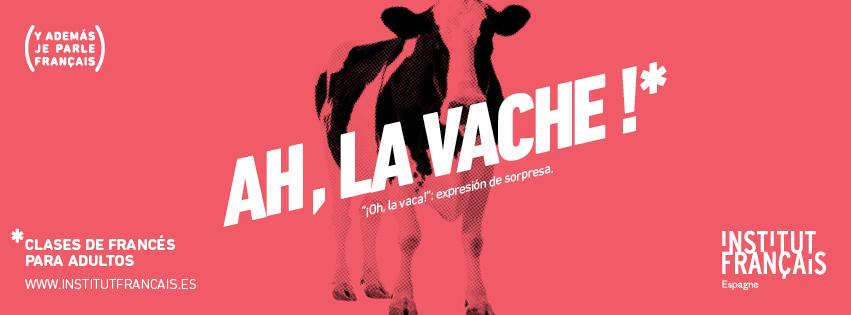 Cursos de francés para adultos