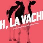 Cursos de francés para adultos en Valencia