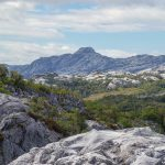 CICLO ARTE | Ultima Patagonia